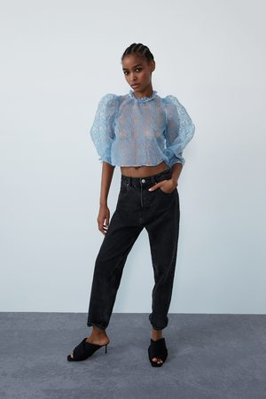 Zara Organza top
